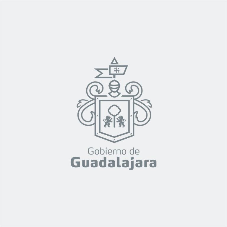 Sistema Gráfico Gobierno de Guadalajara